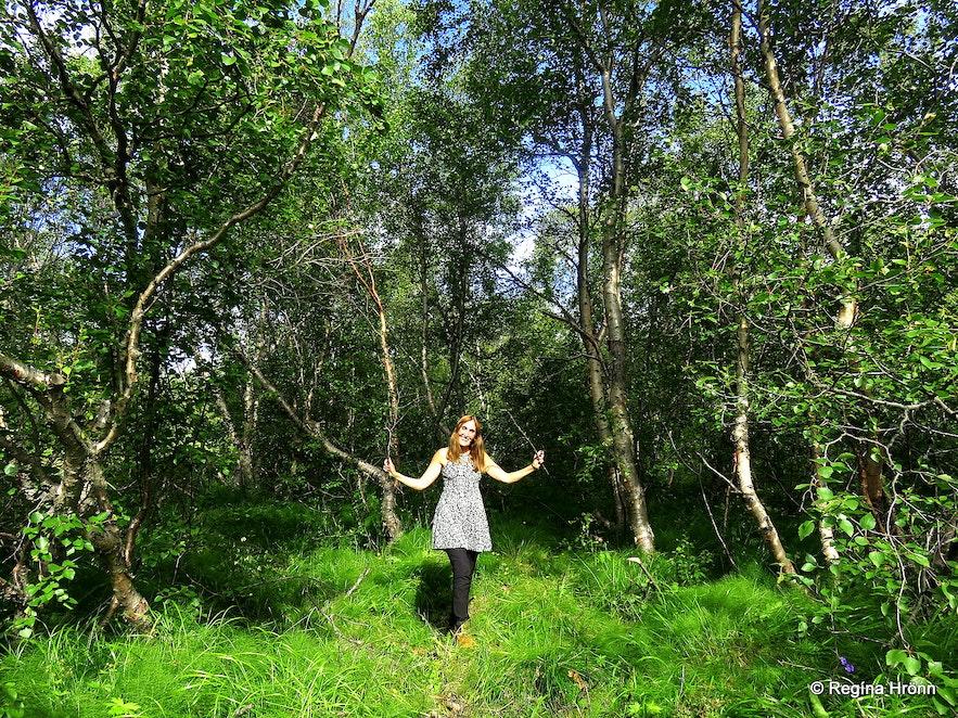 Regína in Vaglaskógur forest