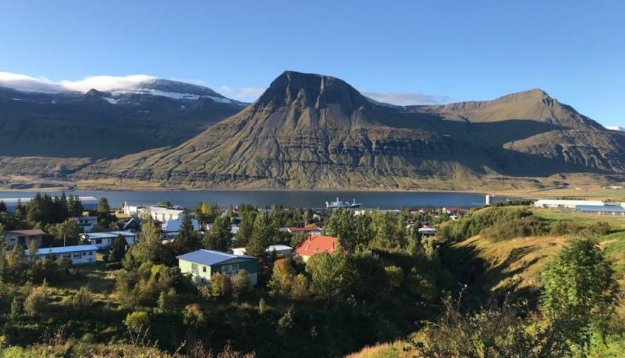东峡湾小镇雷扎尔菲厄泽(Reyðarfjörður)的夏季风光