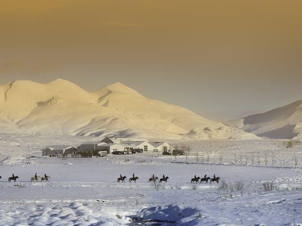 Laxnes Horse Farm