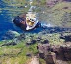 สนอร์เกิ้ล ระหว่างสองทวีป   ถ่ายรูปใต้น้ำฟรี