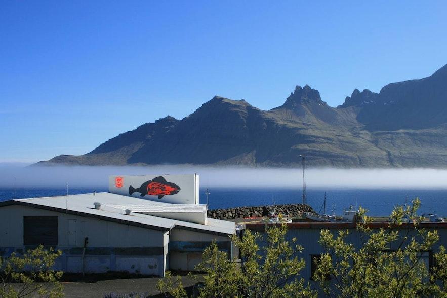 Stodvarfjordur na Fiordach Wschodnich.