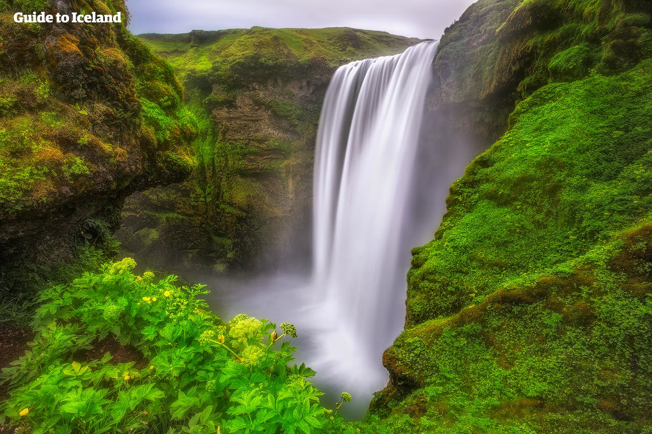 The beautiful Skógafoss waterfall on Iceland's South Coast often casts rainbows across its surroundings.