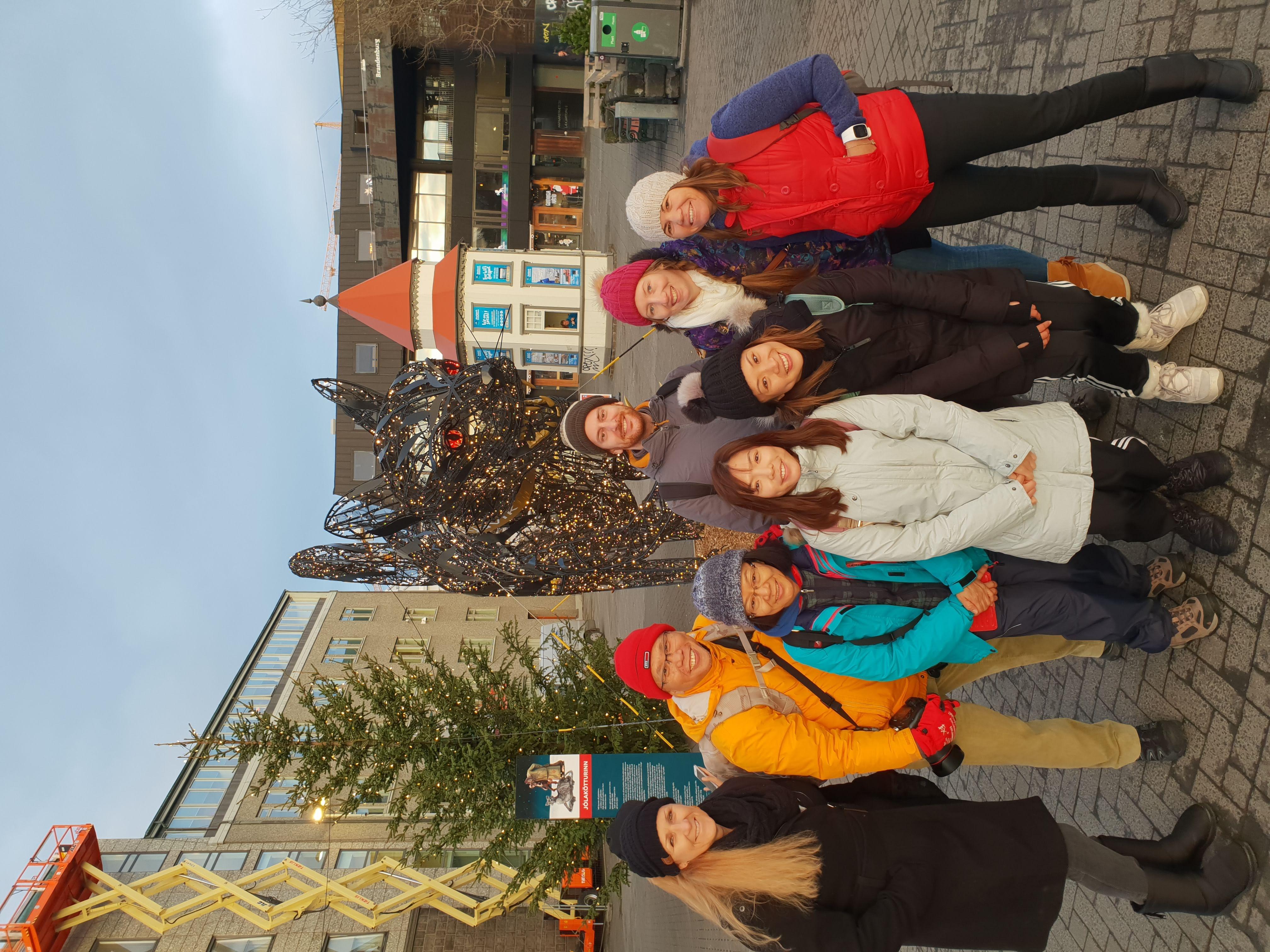 Explore the city of Reykjavík on a walking tour.