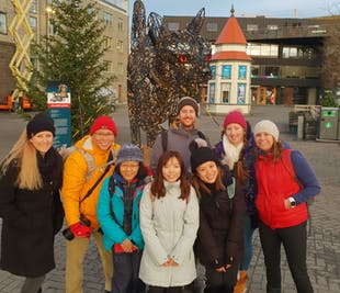 Small Group Walking Tour of Reykjavik with Lunch