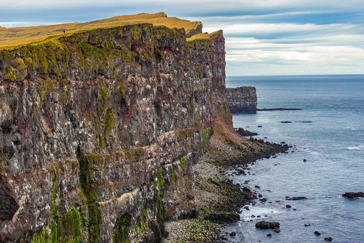 The cliffs at Látrabjarg are home to many seabirds including the beautiful Atlantic puffin.