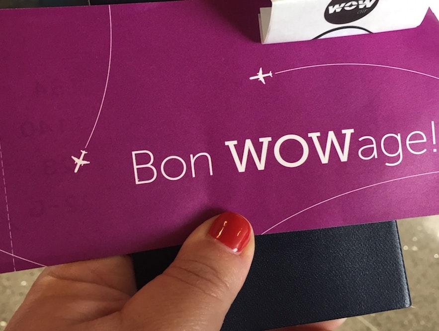 Авиакомпания Wow air отменила все рейсы   Что делать? Советы пассажирам