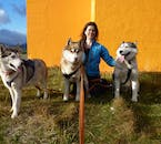 Get to know Huskies on a photo shooting tour in North Iceland.