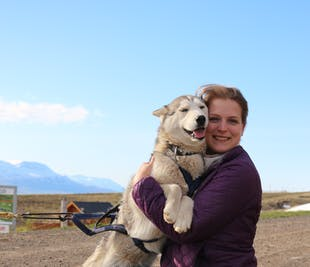 Husky Photo Shooting & Cuddling Tour in North Iceland