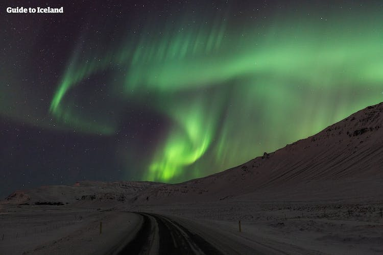 The Northern Lights dancing across the winter sky.