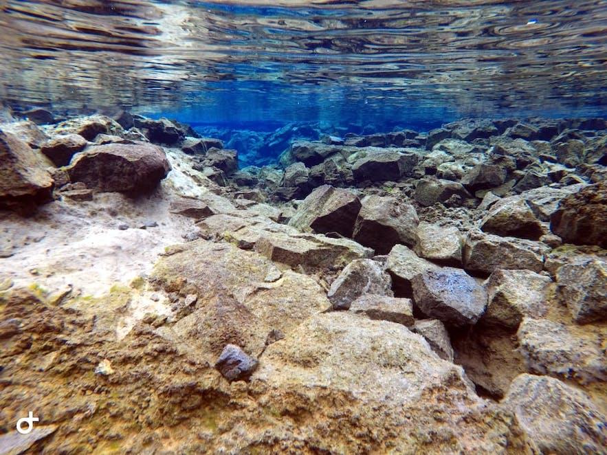 Unterwasserwelt der Silfra