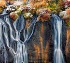 Jesienią łagodne strumyki na Hraunfossar spadają na klify charakteryzujące się ciepłymi odcieniami czerwieni i pomarańczu.