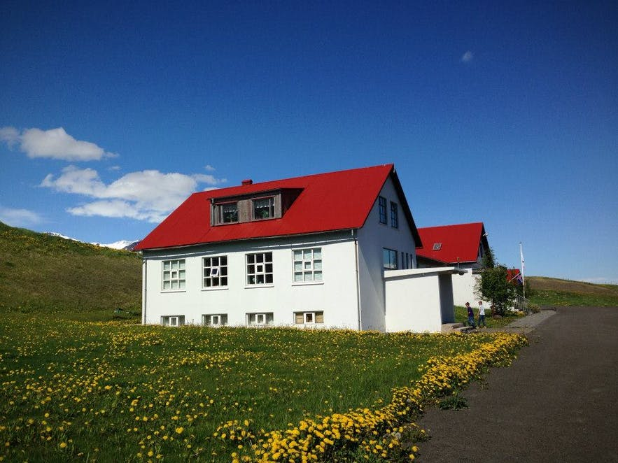 The Top 10 Weirdest Museums in Iceland | Guide to Iceland