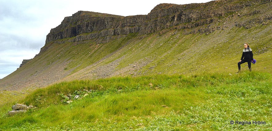 The Natural Wonders of the Westfjords of Iceland - Látrabjarg & Rauðasandur