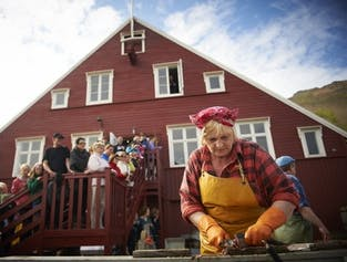 North Iceland Culture Tour for Akureyri Cruise Ships | Museums and the Microbrewery
