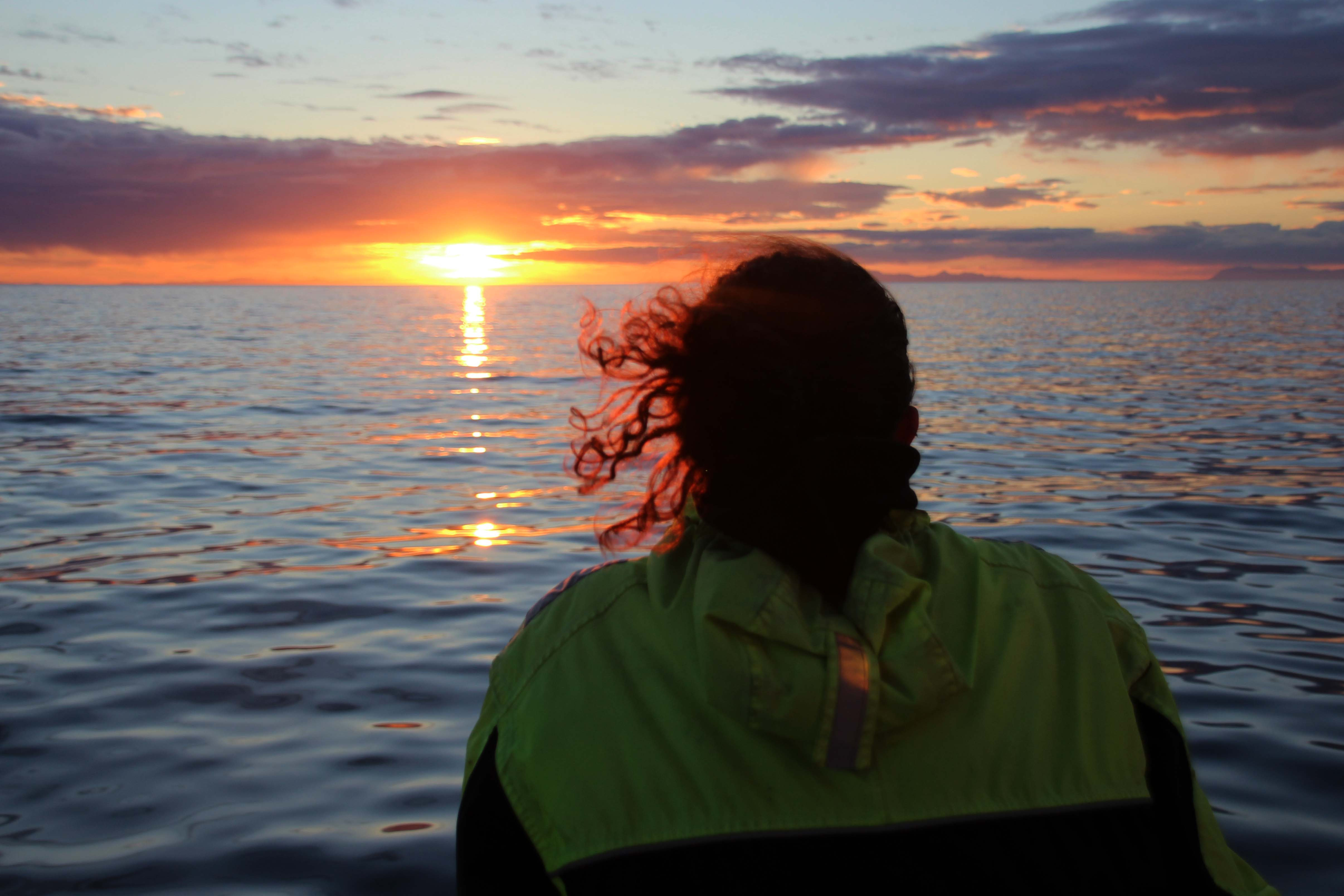 Admire beautiful scenery on Faxaflói Bay on this fantastic Midnight Sun whale watching expedition.