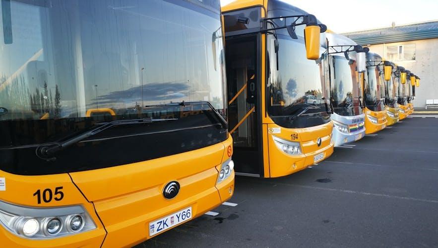 Reykjavík City Buses