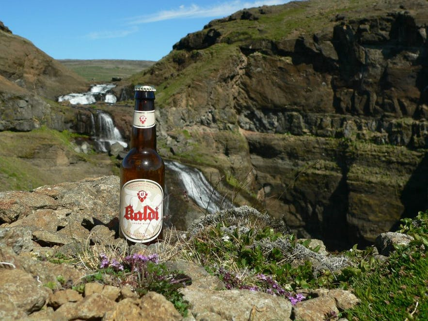 The product of Kaldi Brewery posing in nature