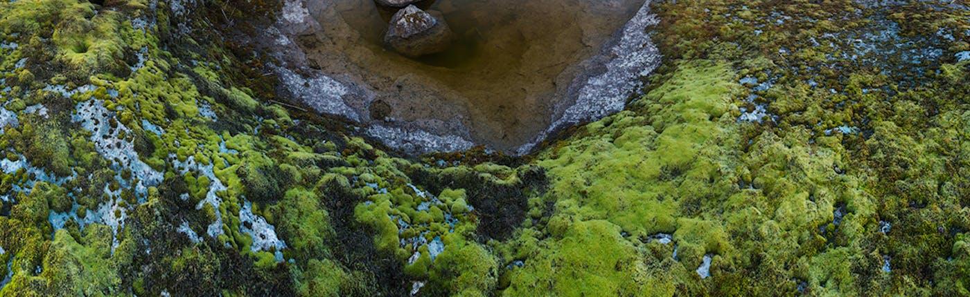 Lake Lagarfljot in east Iceland