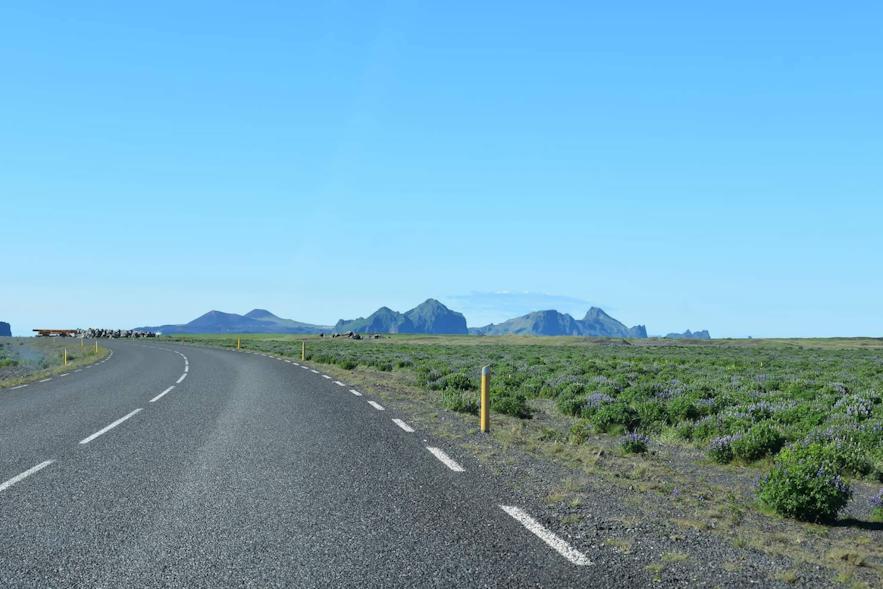 Letzten Kilometer zum Hafen im Süden Islands.
