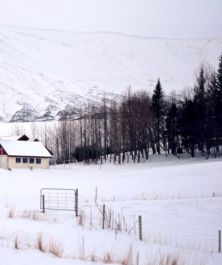 冰島當地Hotel住宿推薦