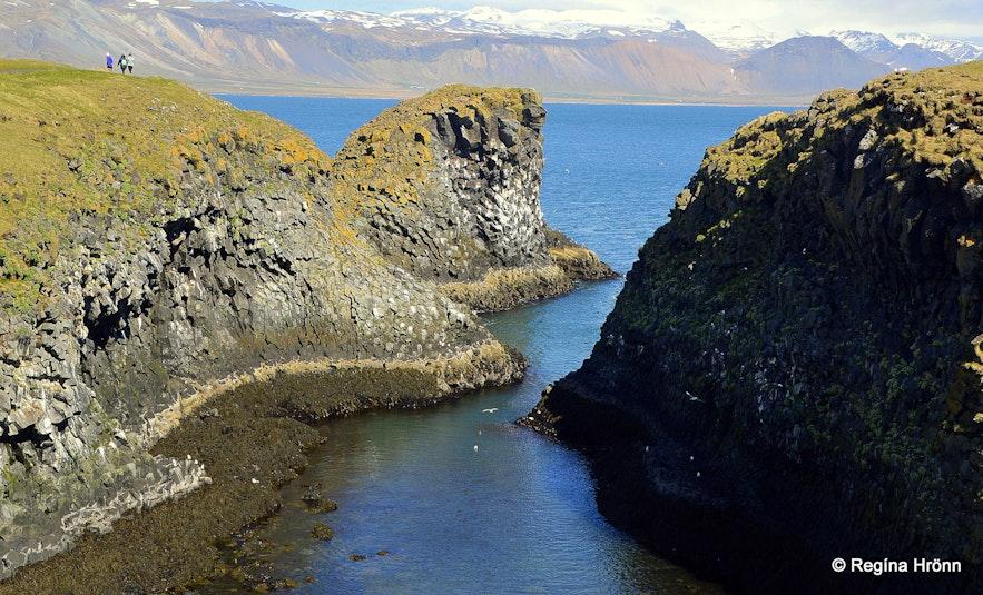 Arnarstapi - Snæfellsnes West-Iceland Pumpa cove