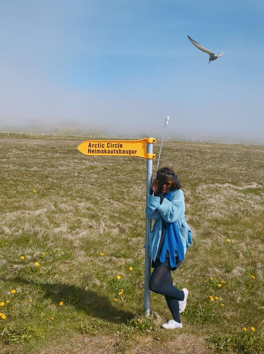 举起自拍杆,可以防北极燕鸥攻击