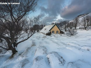 10 Day Winter Package   Guided Tour Around Iceland with Free Days in Reykjavik