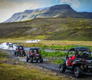 2 hr Buggy tour from Reykjavik