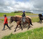 Beginners Horse Riding Tour