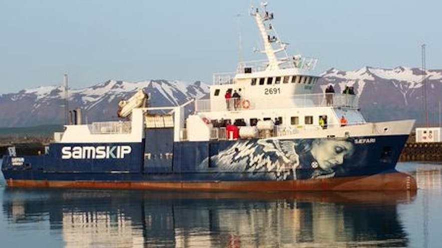 An image of the ferry from Dalvík to Grimsey in Iceland's North.