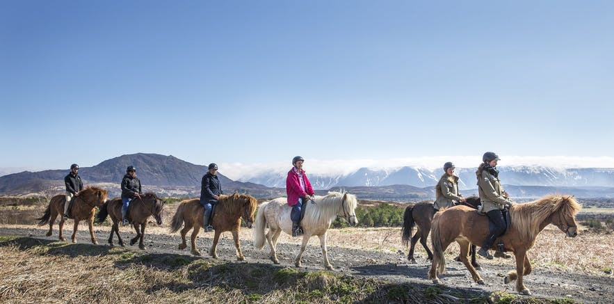 Riding an Icelandic horse is just one of the many extra activities you can add to a guided tour package to enhance your experience