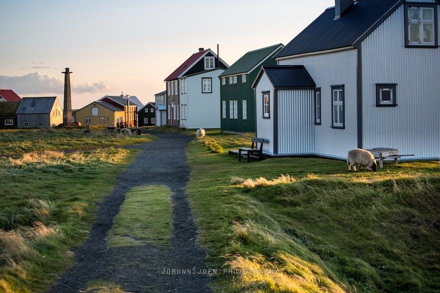 The quaint homes on Flatey