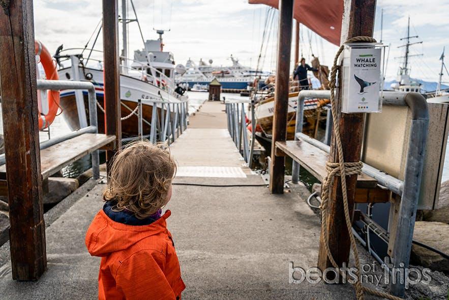 Preparados para el avistamiento de ballenas en el embarcadero de North Sailing