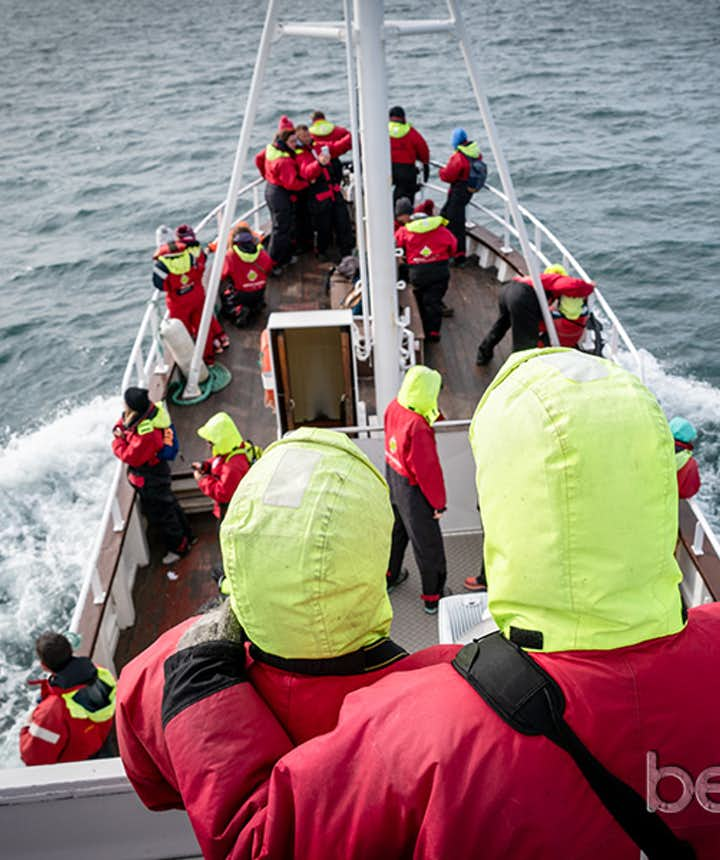 Las atléticas ballenas de Husavík quedarán para siempre fotografiadas en nuestras retinas