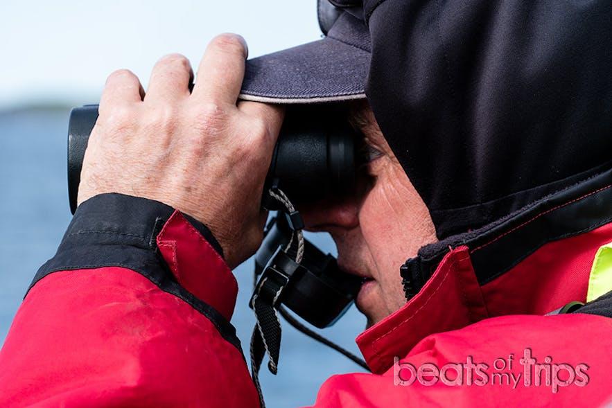Atención ballena a la vista!