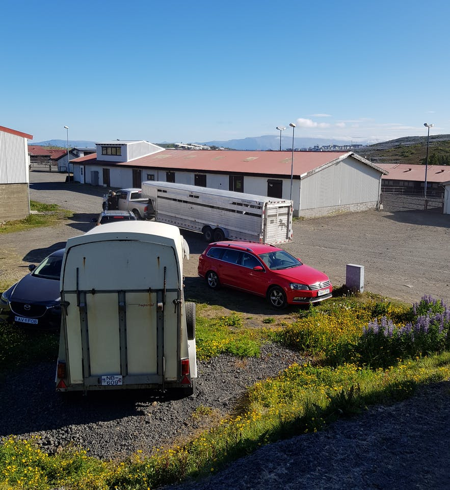 Stallanlage in Hafnarfjördur mit Pferdeanhänger auf Island.