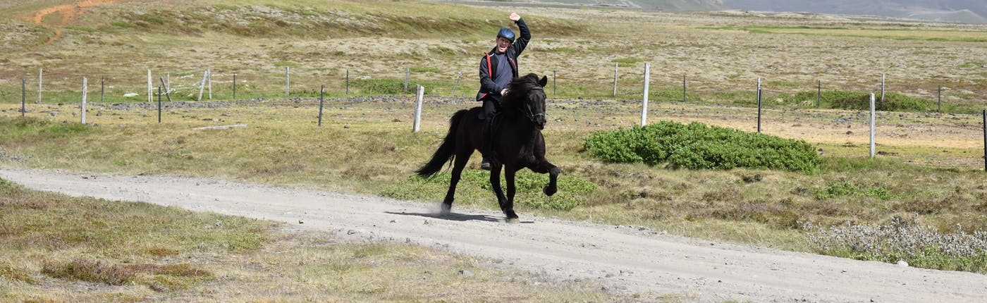 Gute Stimmung bei Pferd und Reiter bei dem Highlight der Saison - die Sleppitur.