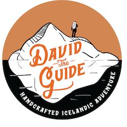 David The Guide logo
