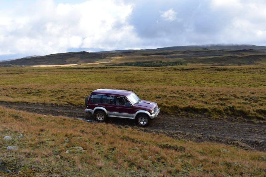 Geländewagen in Südisland beim Schafabtrieb.