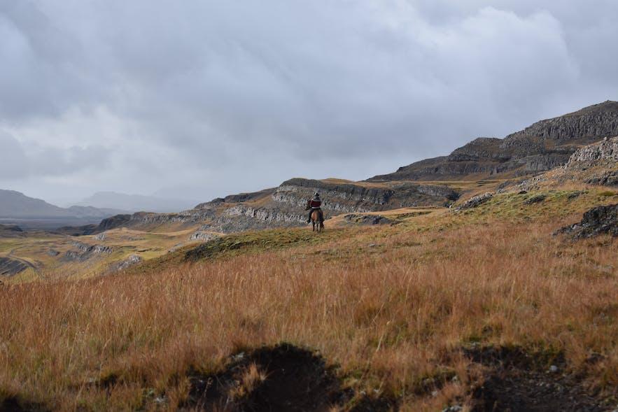 Pferd und Reiter in Berglandschaft in Südisland