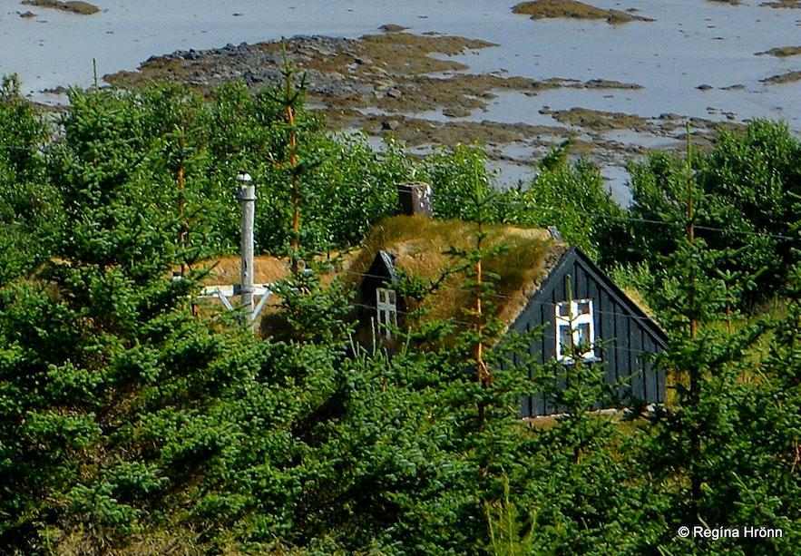 Barmar turf house