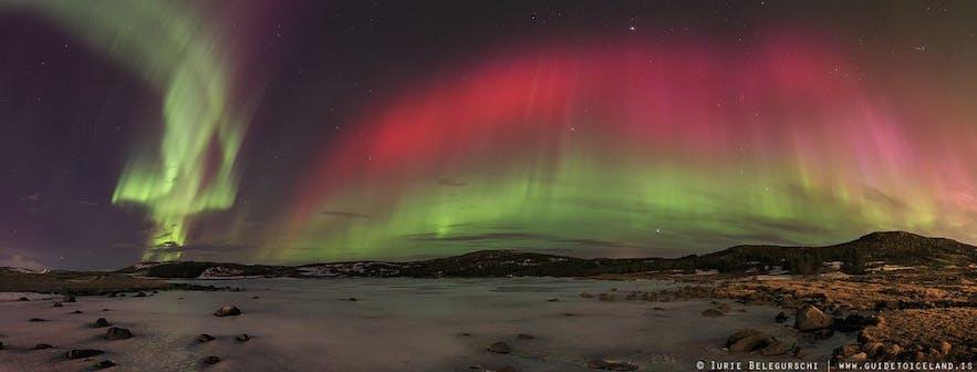 Polarlichter in grellem Pink über isländischer Natur