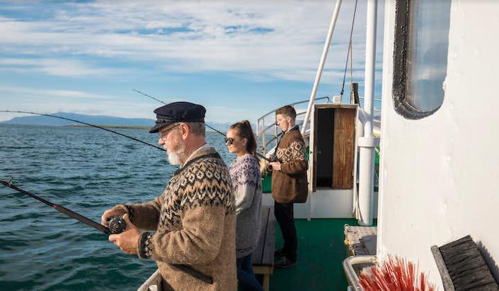Excursión de pesca en el mar   Desde Reikiavik