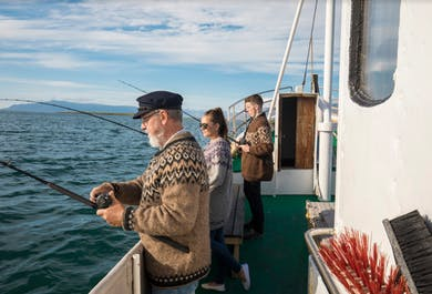 Sea Angling Experience | From Reykjavík