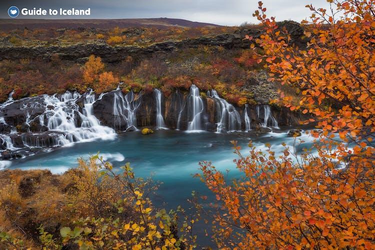 Umgeben von herbstlichen Farben sieht der Wasserfall Hraunfossar noch fantastischer aus als sonst.