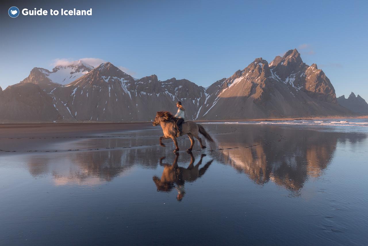 冰岛东南部Stokksnes半岛上的西角山造型独特