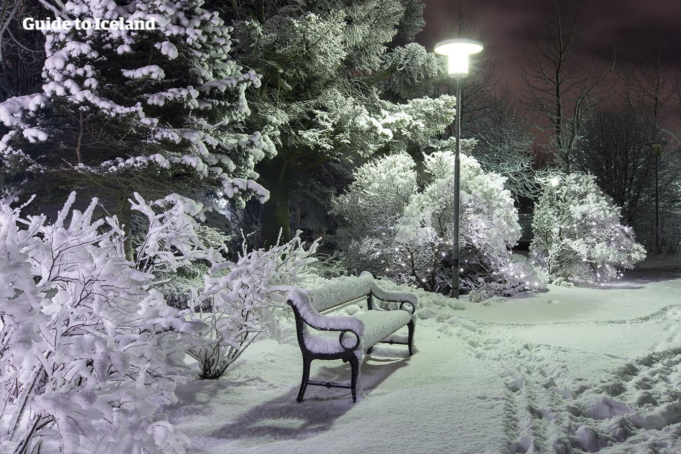 Die Lichter der liebenswerten Hauptstadt Reykjavík erleuchten die kalte, dunkle Winternacht.