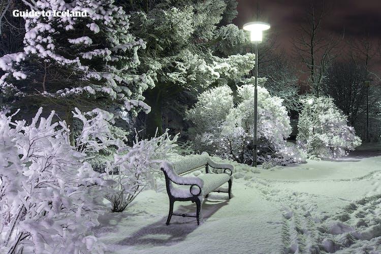 The lights of cosy capital Reykjavík brighten the cold dark winter night.