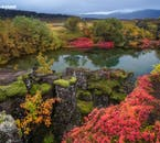 Þingvellir becomes a wonderland of colour in the autumn time.