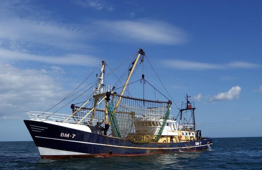 渔业自古至今都是冰岛的重要经济支柱